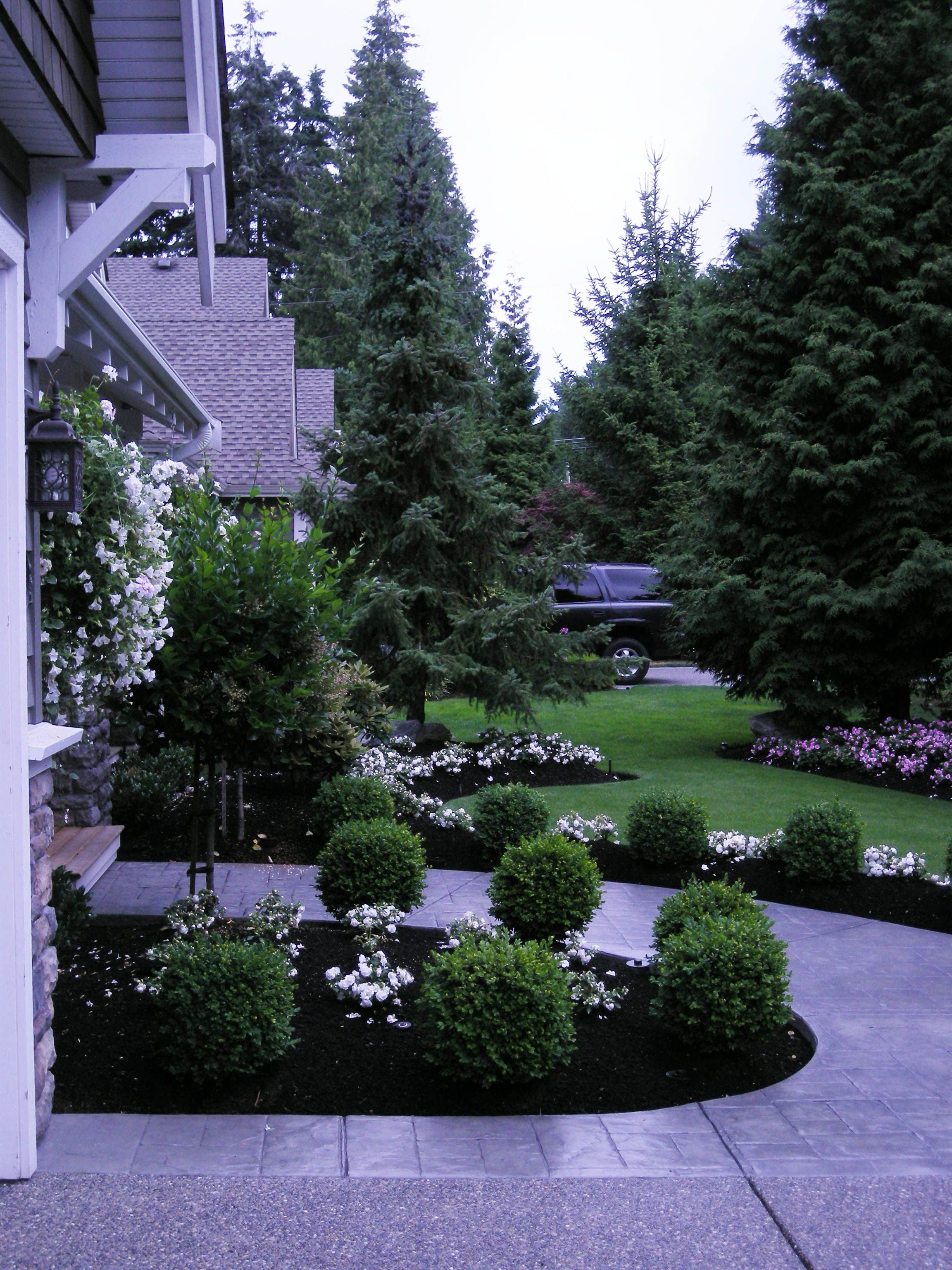 Front Yard Front Yard Makeover Transformation South Surrey Bc Front Yard Landscaping Design Front Yard Landscaping Front Lawn Landscaping