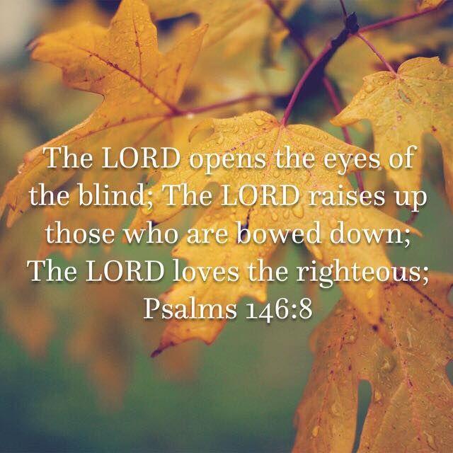 Psalm 146:8