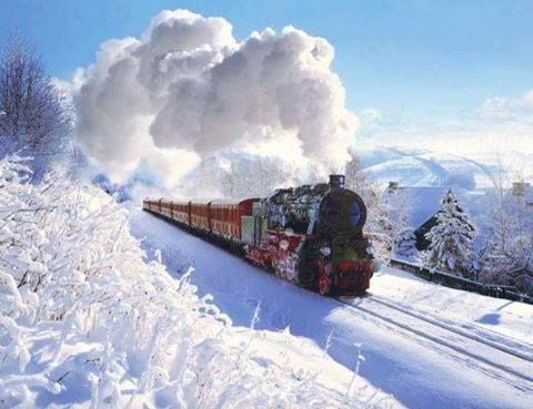 Pin By Ligonier Valley Rail Road Muse On Scenes Trans Siberian Railway Russia Travel Winter Pictures