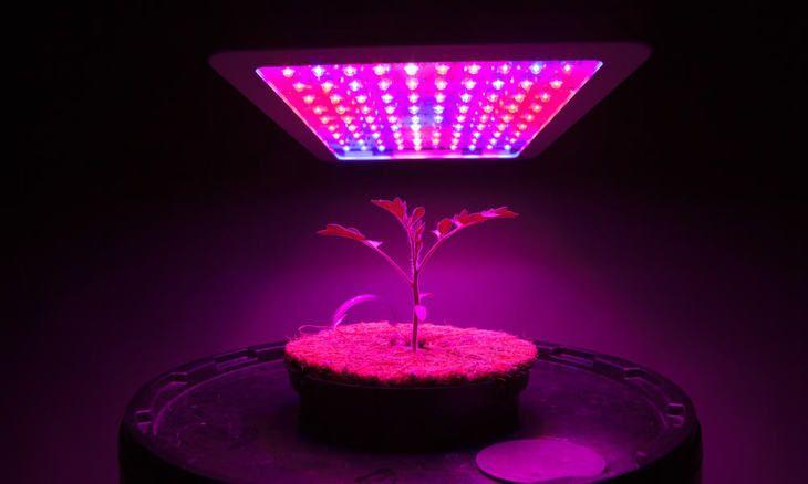 Best Indoor Grow Lights For Vegetables Reviews Buying 400 x 300