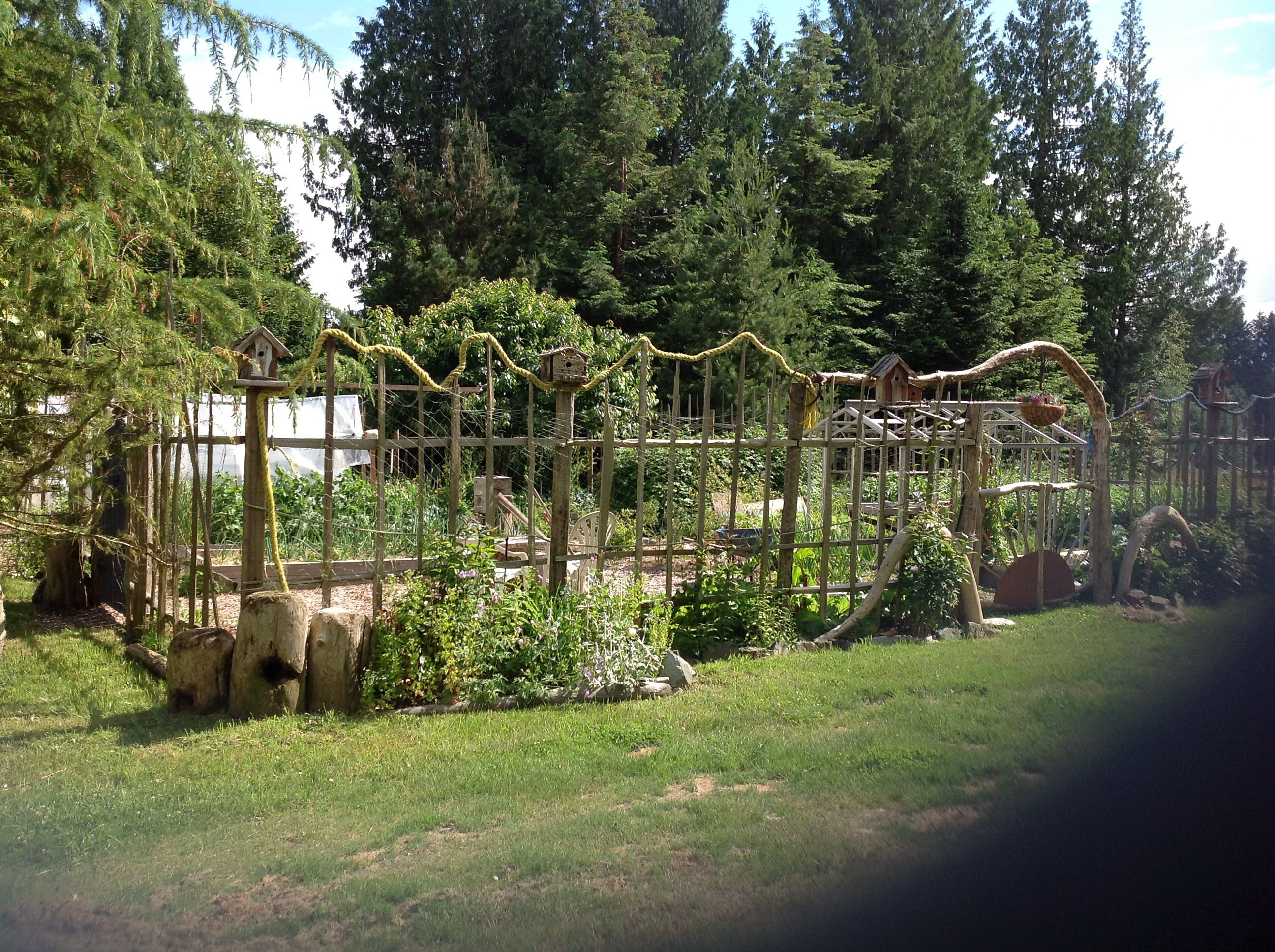 How To Build A Deer Proofu2026.Funky, Garden Enclosure Fence | Shoe String Life  Style