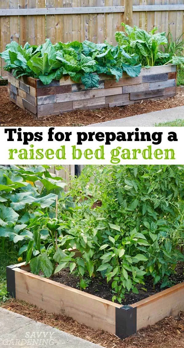 6 things to think about before preparing a raised bed garden is part of Vegetable garden raised beds, Home vegetable garden, Raised vegetable gardens, Building a raised garden, Raised garden, Organic gardening tips - or installing raised beds this season  Here are a few things you might like to know when preparing a raised bed garden