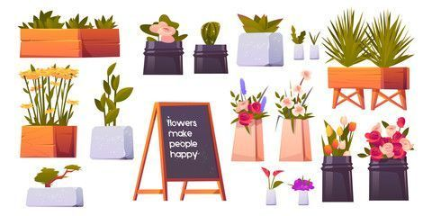 Flower shop set potted plants and bonsai isolated on white background floristibackground