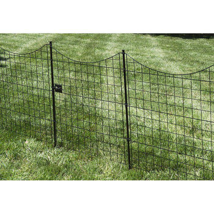 3 5 ft  H x 3 ft  W Zippity Garden Fence Gate in 2019 | Petopia