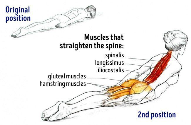 These 10 Exercises Will Un-Slouch Your Back To Correct Bad Posture And Remediate Back Pain