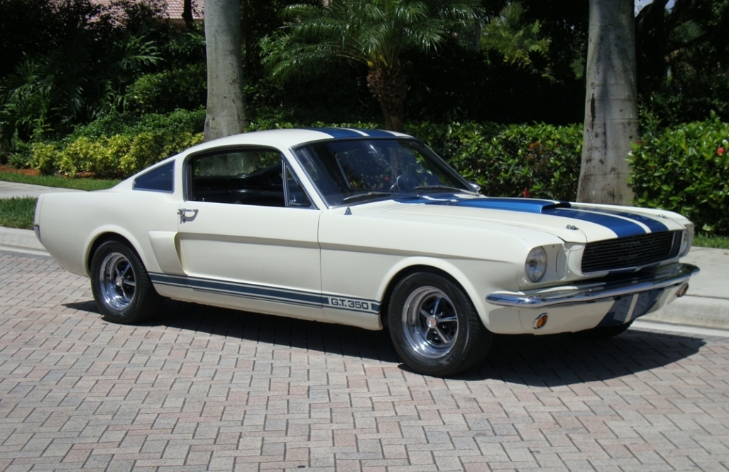 1966 Ford Mustang Fastback Shelby Gt 350 1966 Mustang Gt Ford