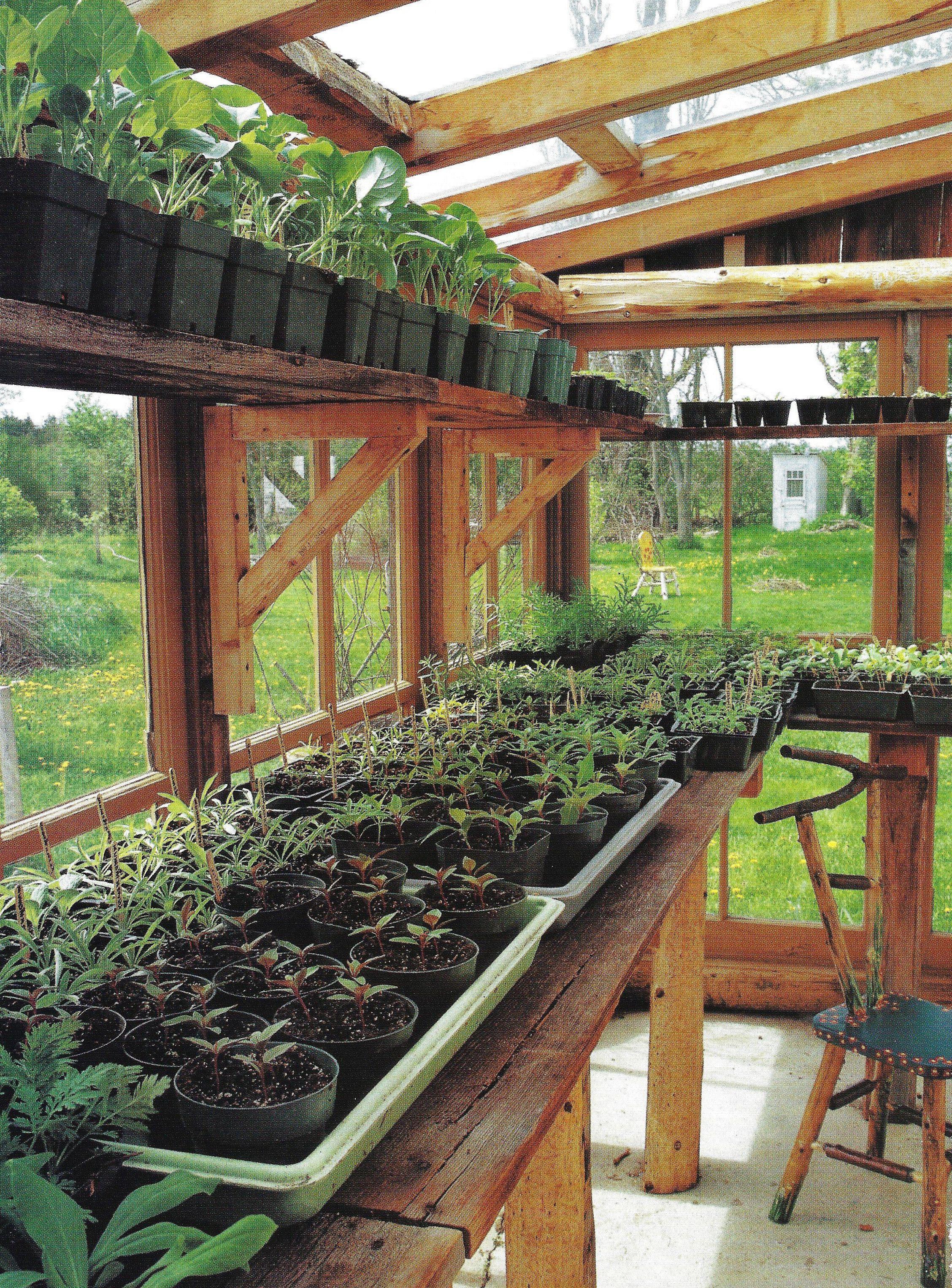 Backyard Greenhouse | Greenhouse and gardening | Pinterest | Garten ...
