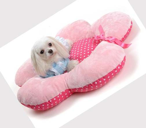cute flower dog bed dog beds pinterest hunde hund und katze und katzen. Black Bedroom Furniture Sets. Home Design Ideas