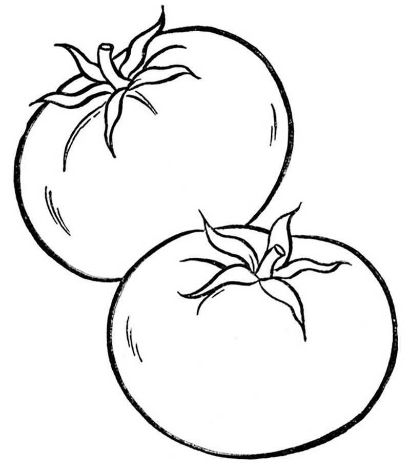 Tomato Fruit Coloring Printable