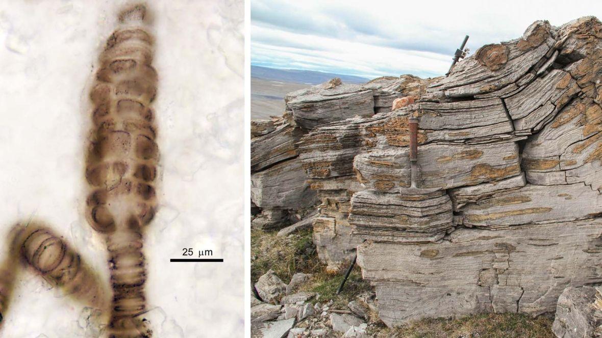 Rhenium osmium dating sites