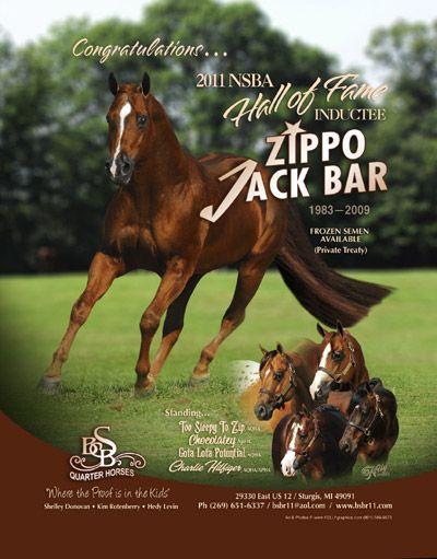BSB Quarter Horses - AQHA Stallion Zippo Jack Bar Chase's
