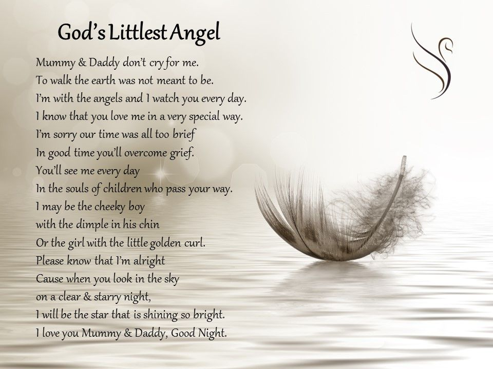 god's little angel - 960×720