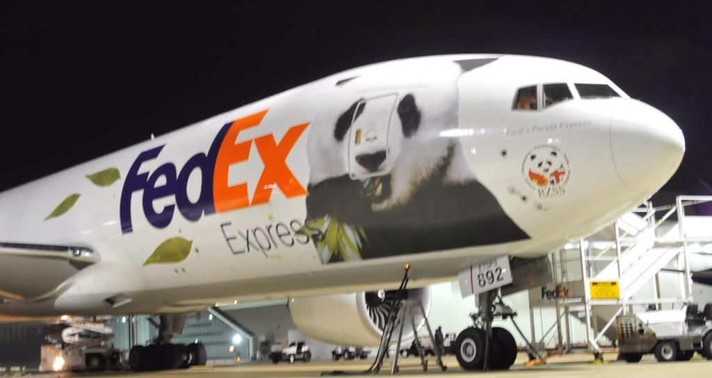 Cool Aircraft Paint Jobs aerosur torisimo reader contribution to - fedex jobs
