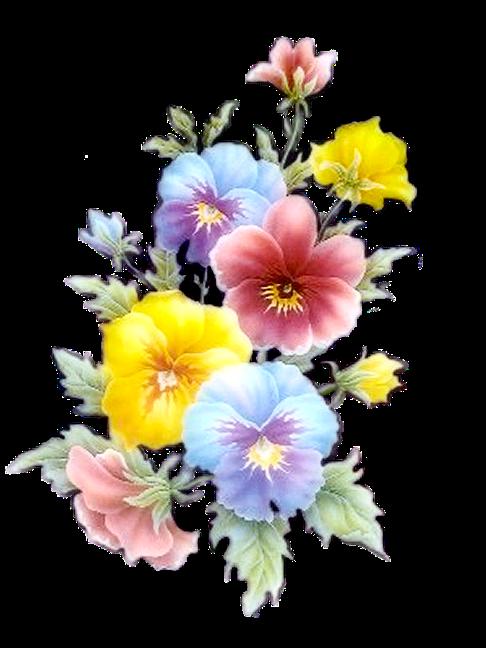 fleurs des pensees png kvety en 2019 fleurs. Black Bedroom Furniture Sets. Home Design Ideas