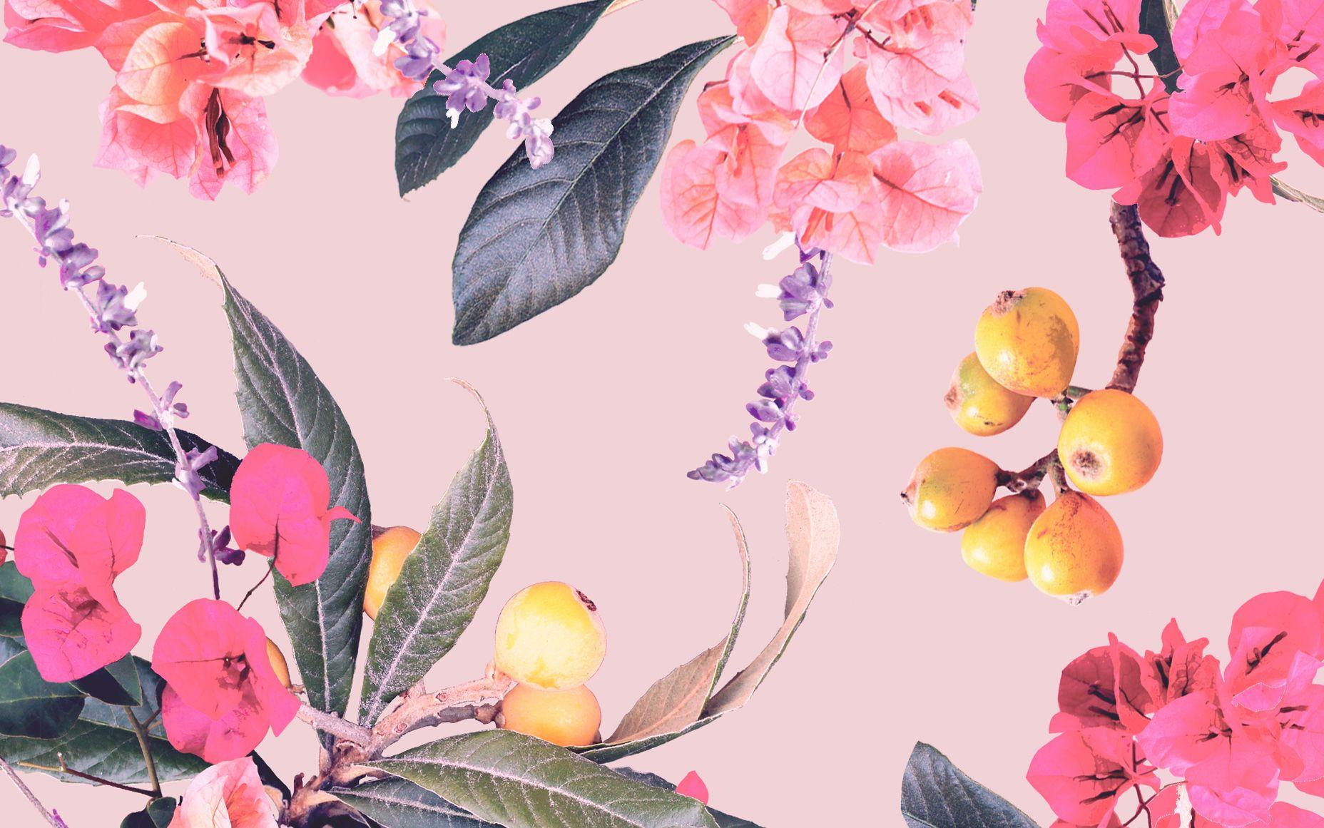 Designlovefest Santana Dress Your Tech 01 02 Jpg 1856 1161 Floral Wallpaper Desktop Flower Desktop Wallpaper Laptop Wallpaper Desktop Wallpapers