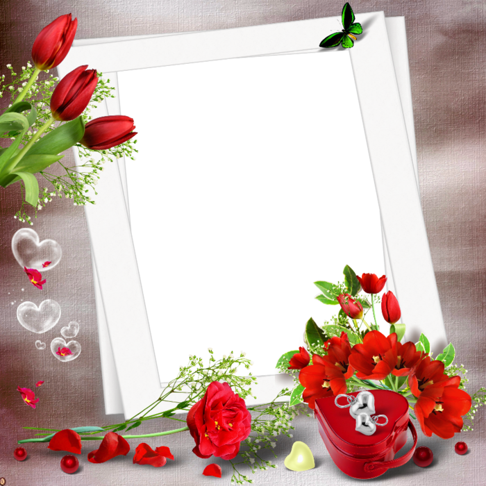 transparent nice png photo frame with red flowers frame to add