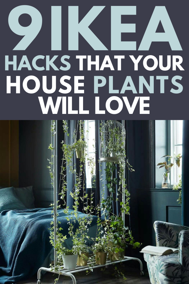 IKEA Plant Hacks Your Green Friends Will Love is part of Ikea plants, Plant hacks, Ikea hack, Ikea, Ikea diy, Diy ikea hacks - IKEA plant hacks you need to try now! Show your houseplants some love with these DIY IKEA hacks  Easy Tutorials for all skill levels