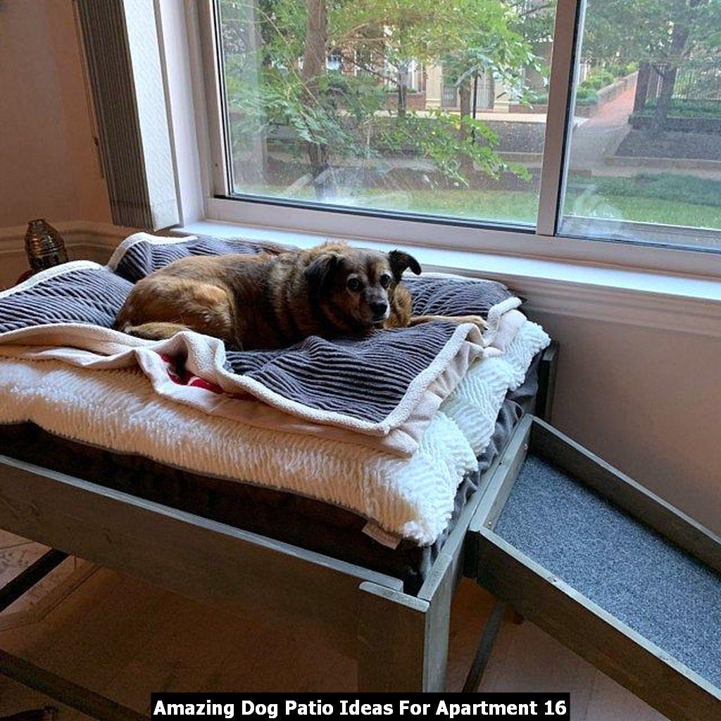 Amazing Dog Patio Ideas For Apartment Elevated Dog Bed Dog Bed Large Raised Dog Beds