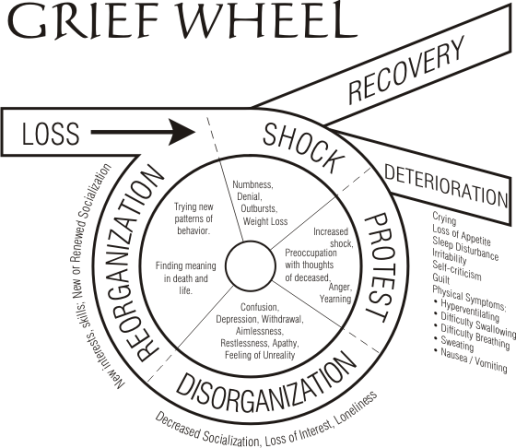 This wheel is a accurate picture of my ability as astudent because