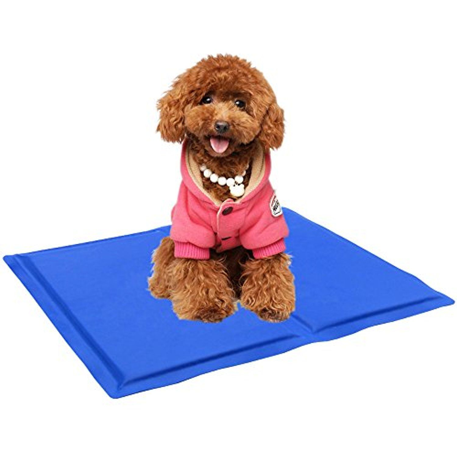 mats pet cool the your keep kandh dog for dogs find cooling best elevated to bed