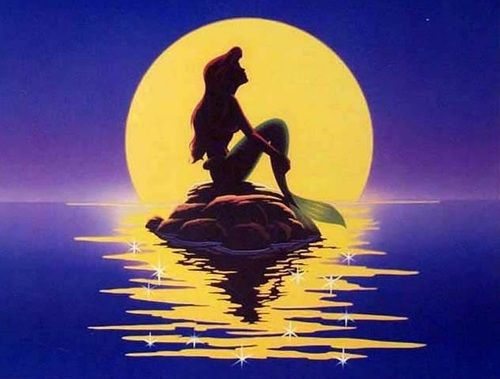 Image result for ariel on a rock
