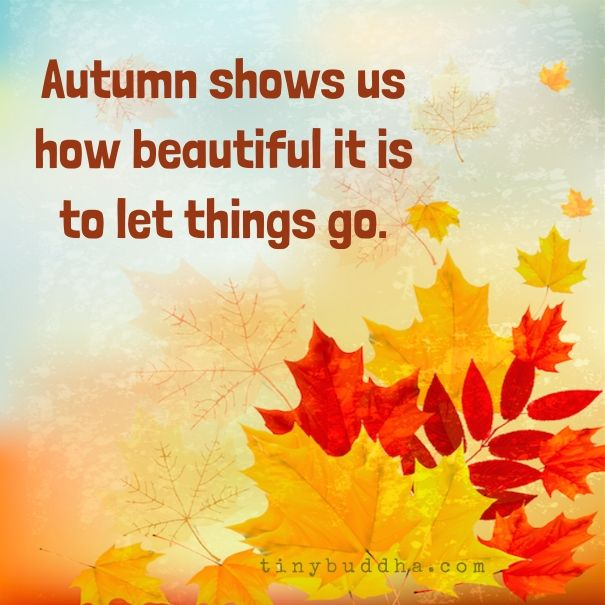 Autumn Shows Us How Beautiful It Is to Let Things Go - Tiny Buddha