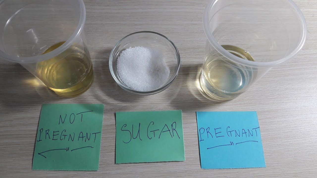 Pregnancy Test At Home With Sugar Video Sugar Pregnancy Test Positive Positivepregnancytest