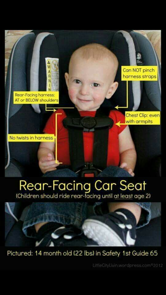 Proper Rear Facing Extended Car Seat Toddler