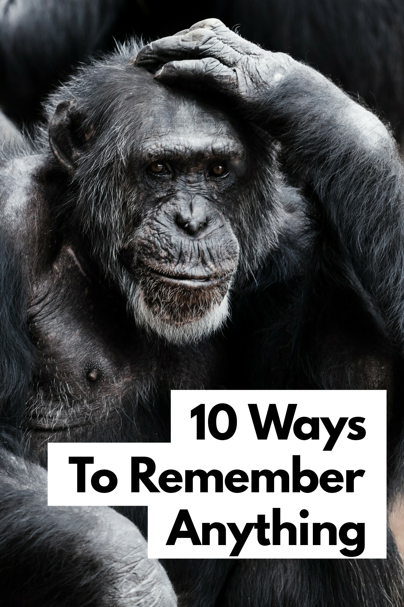 10 EASY Ways To Memorize Anything How to memorize things