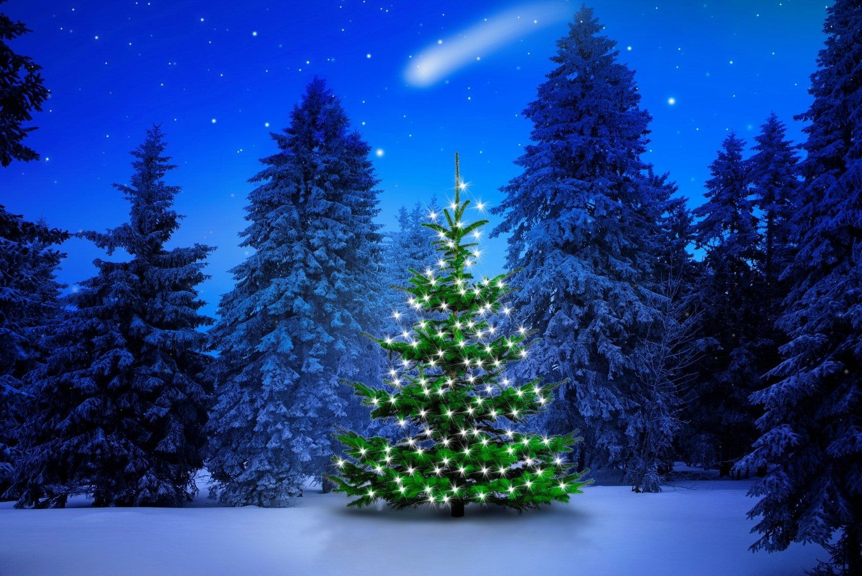Lighted Tree In Winter Forest Computer Wallpapers Desktop Christmas Tree Wallpaper Winter Wallpaper Desktop Tree Wallpaper Phone