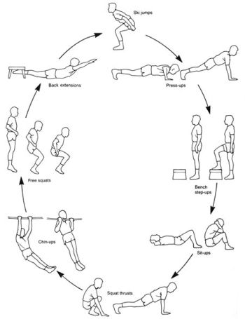 circuit training plan creator has a sketch of all the work out rh pinterest com