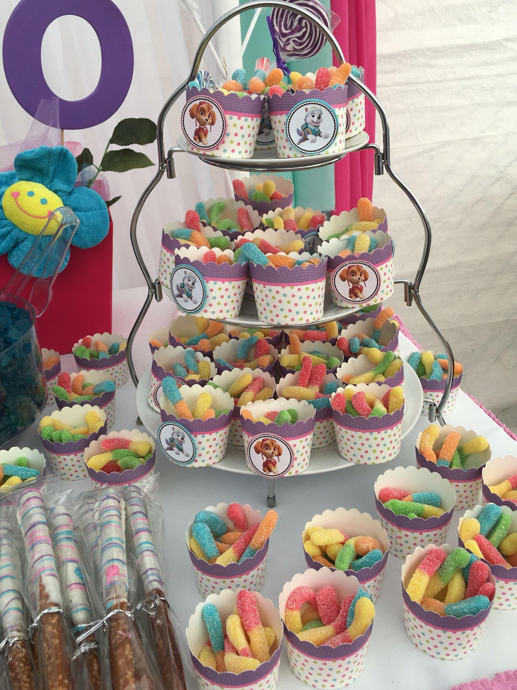 Paw Patrol Everest And Skye Paw Patrol Birthday Girl Skye Paw Patrol Party Paw Party