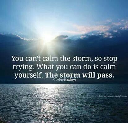The Storm Will Pass Buddha Quotes Life Quotes Passing Quotes