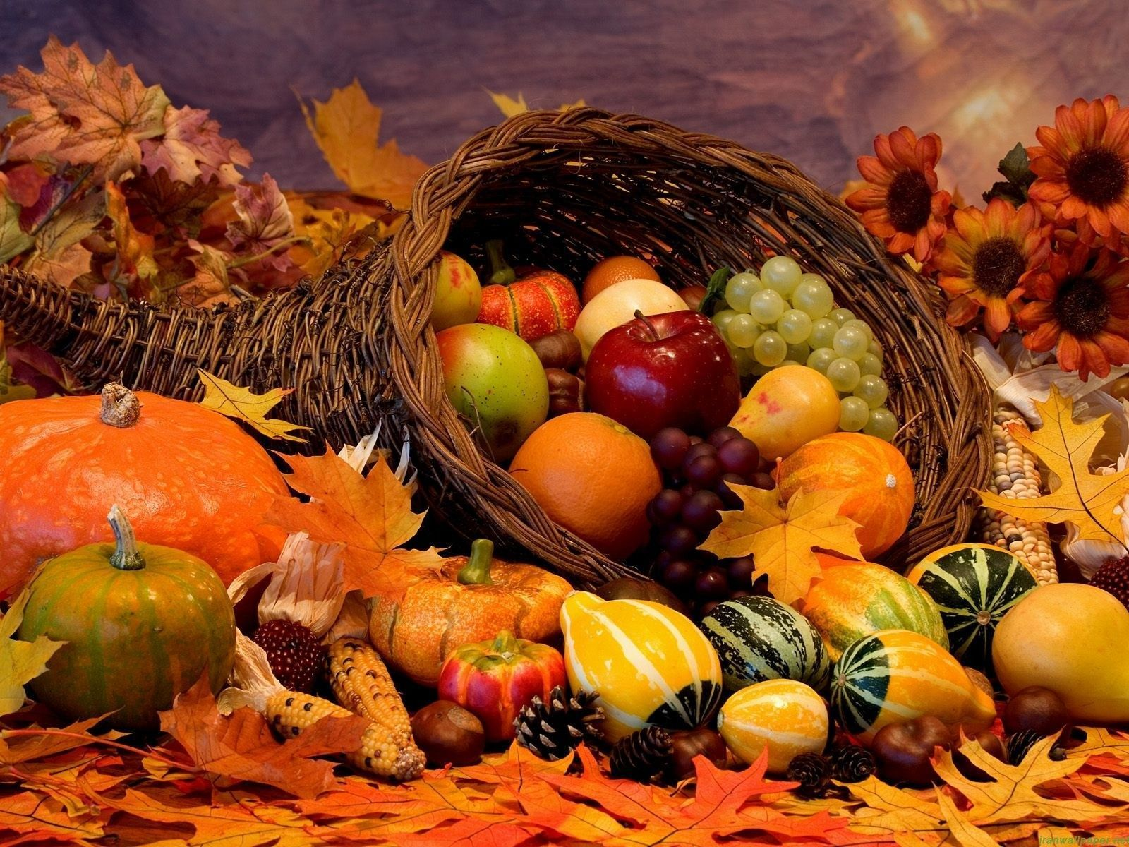 thanksgiving desktop wallpapers free wallpaper