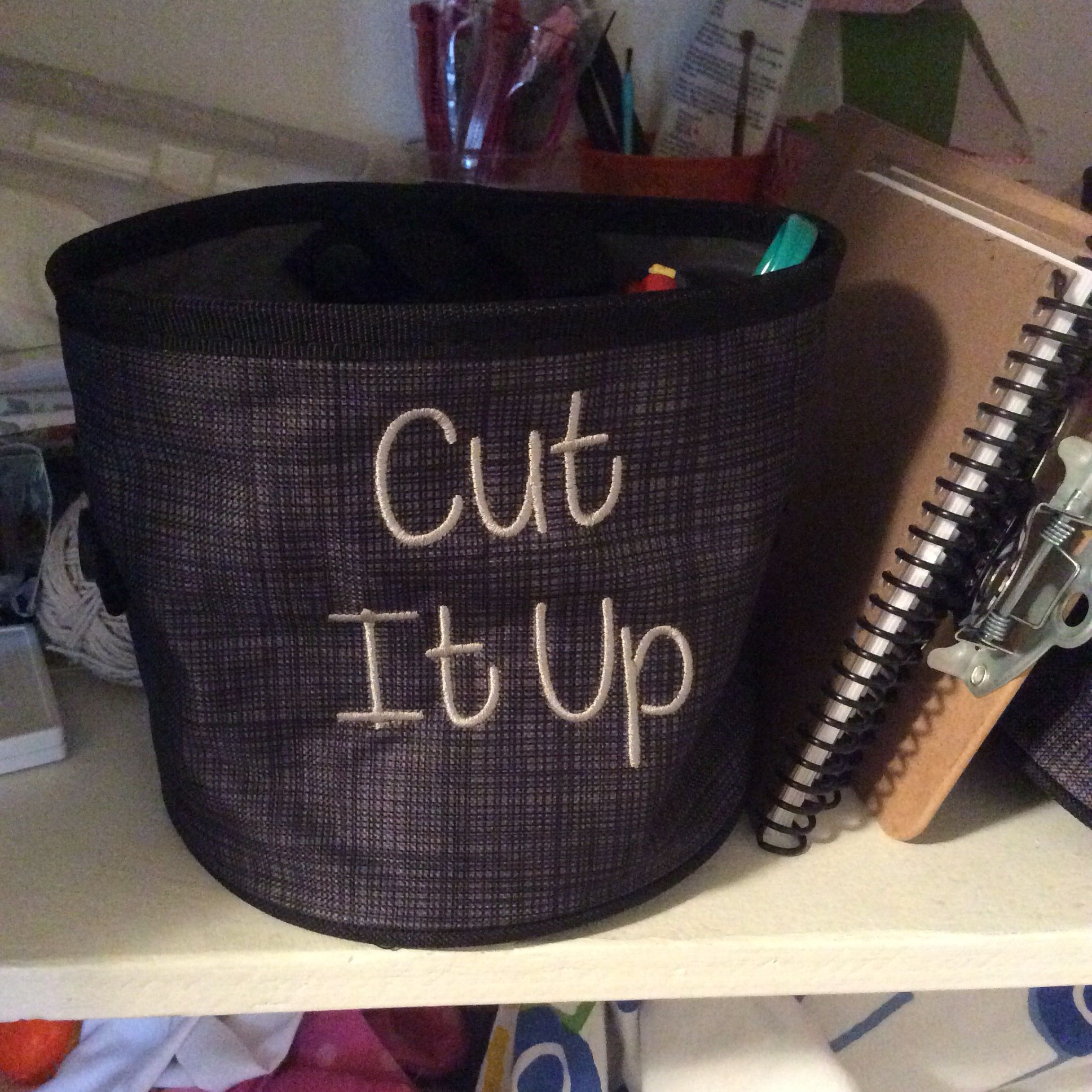 Oh snap bin. Great to organize all sorts of supplies. #ohsnapbin #flirtyonederful #31uses