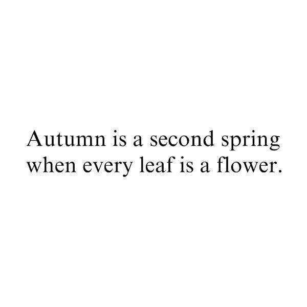 autumn quote by {fairytale asylum}