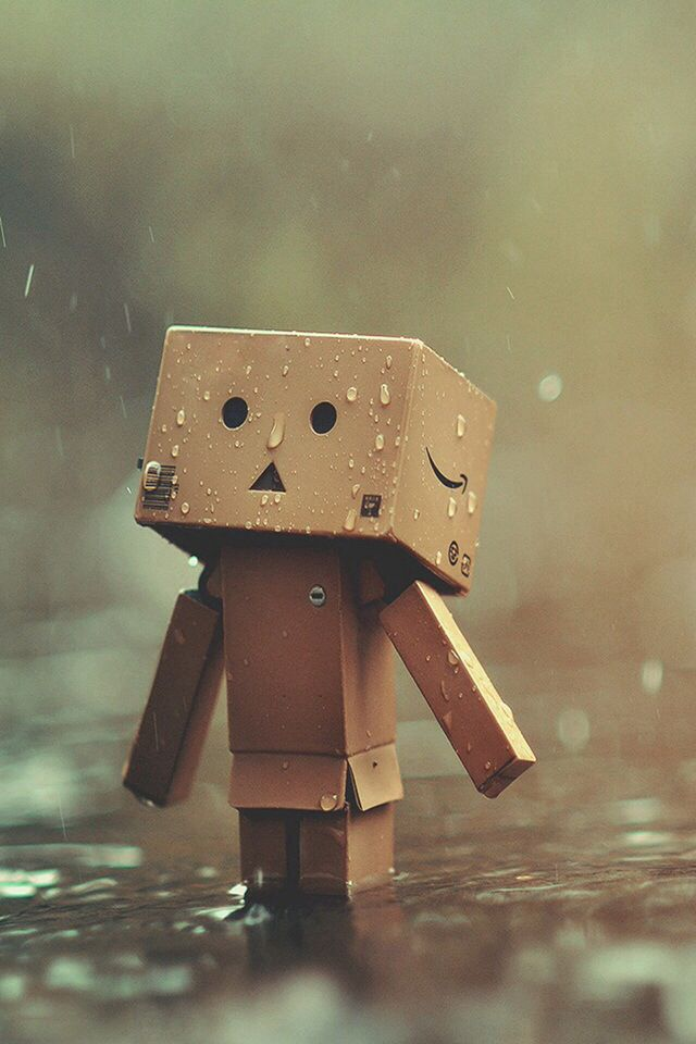Sitting In The Rain Danbo Cute Cartoon Boy Box Art