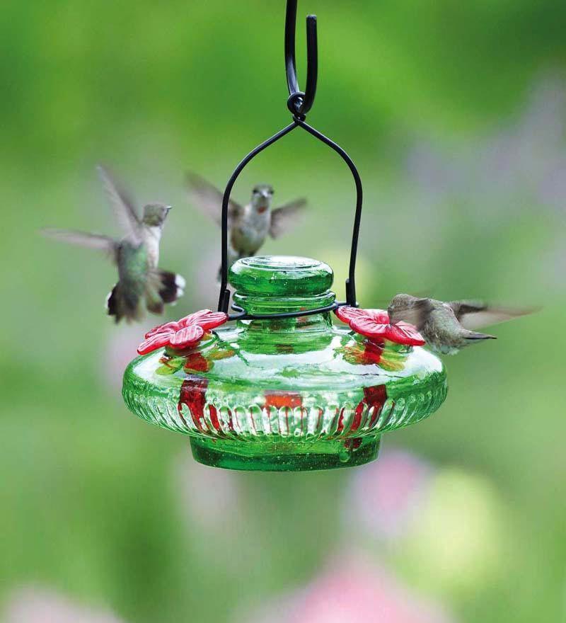 Hurricane Lantern Hummingbird Feeder with 3 feeding ports