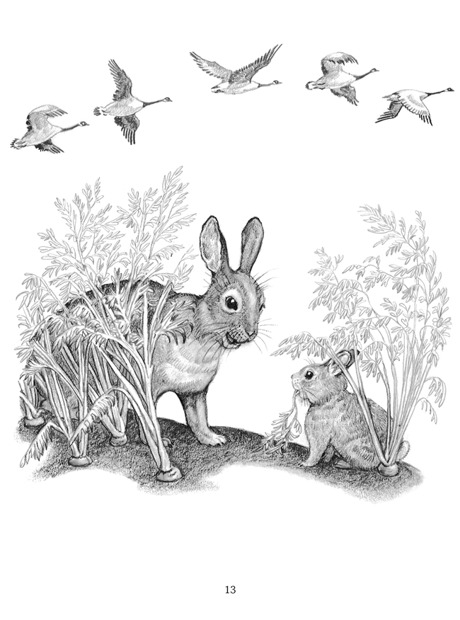 Welcome to Dover Publications - The Big Snow | Bunny ...