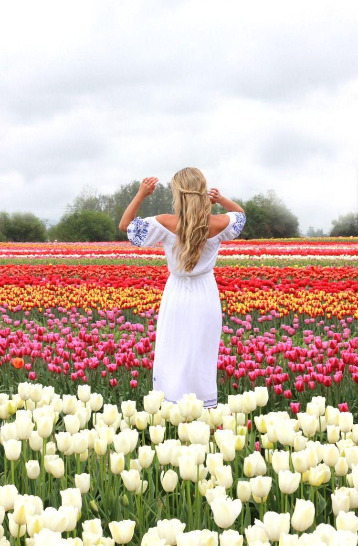 Cara Jourdan Tulip Festival Tulip Festival Flower Photoshoot Tulips