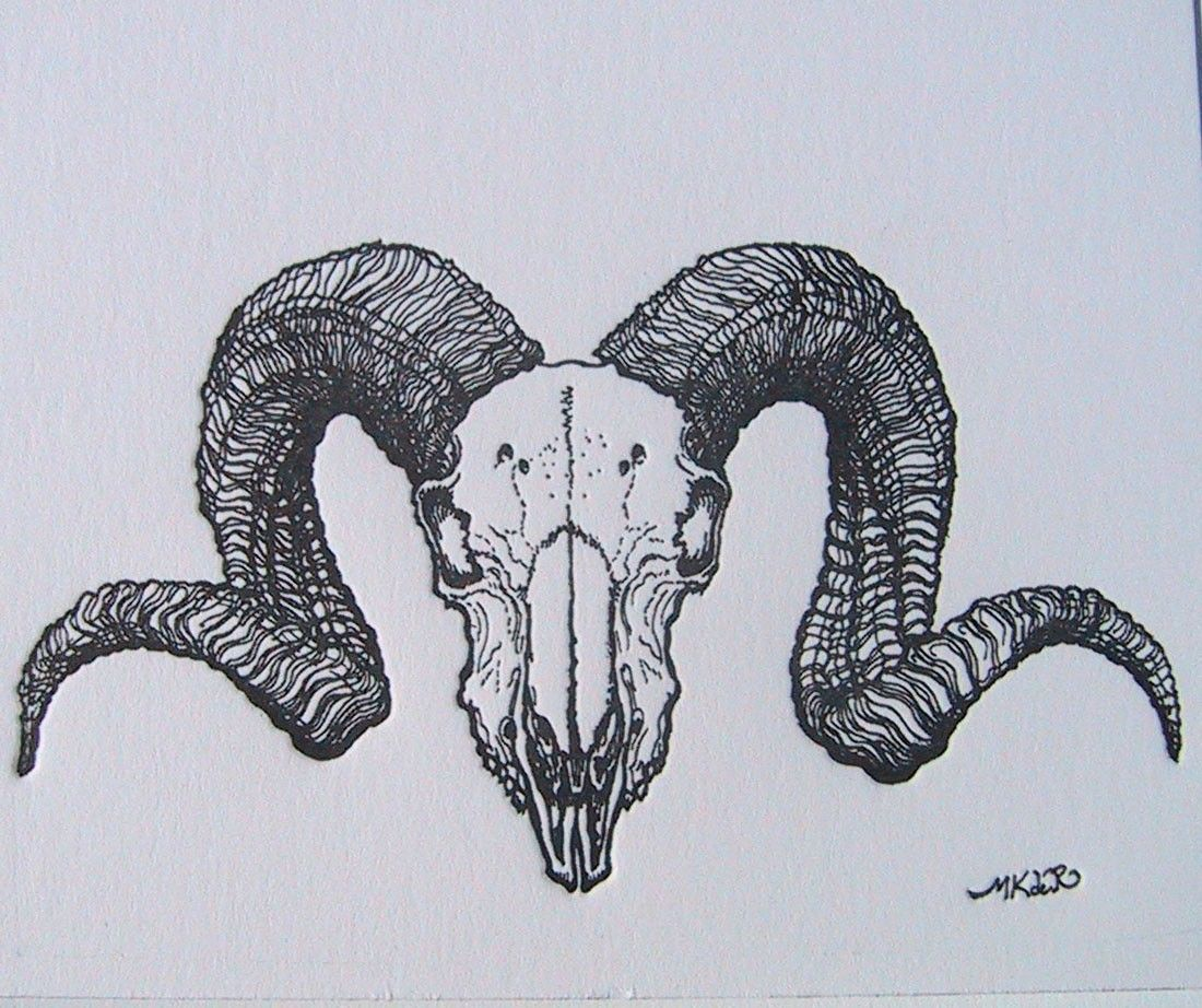 ram skull illustration tattoo back - Google Search ...