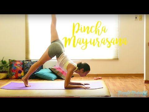 shoulder strengthening  pincha mayurasana preparation