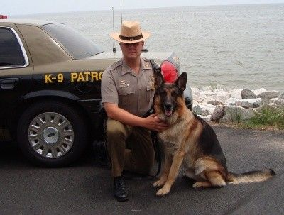 Maryland State Police German Shepherd And Handler Military
