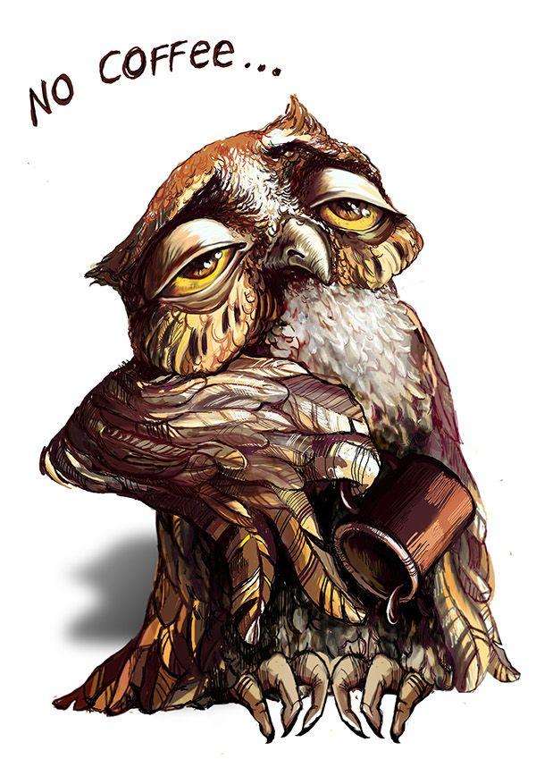 The Owl Coffee On Behance