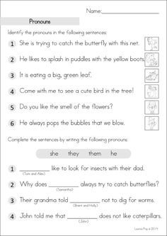 Grade 2 Homework An Introduction Pronoun Worksheets Nouns