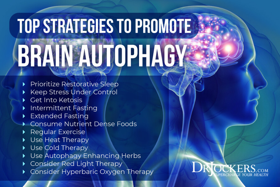 Brain Autophagy Healing The Toxic Brain Drjockers Com In 2020 Hyperbaric Oxygen Therapy Oxygen Therapy Cold Therapy
