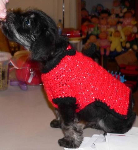 Small Dogs Sweater By Victoryah Dog Sweater Pattern Small Dog Sweaters Crochet Dog Sweater
