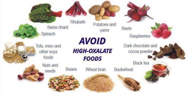 Low Oxalate Dog Food Brands