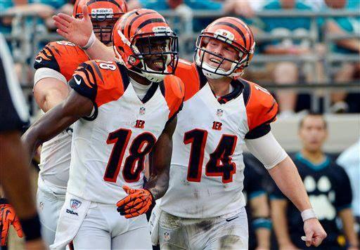 Cincinnatibengals Cincinnati Bengals Bengals Steelers Bengals