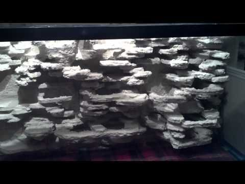 Playing 3d Background Diy Aquarium Prewater Stage